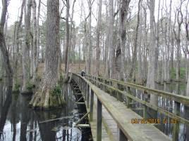 KalInSwamp