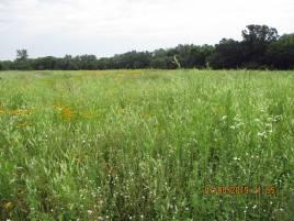 Prairie2